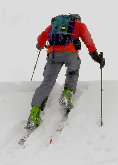 Lee skiing